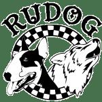adiestramiento canino y educacion canina zaragoza